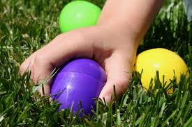 Egg hunt training